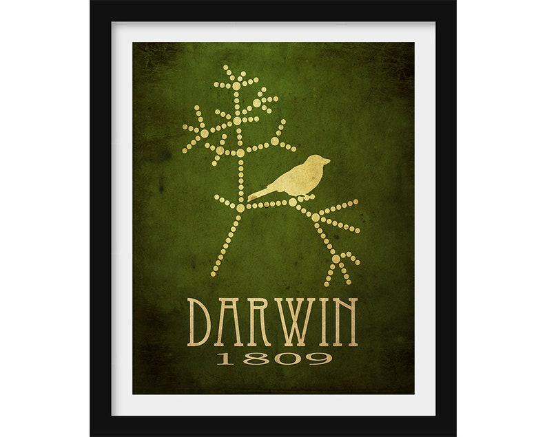 Darwin Tree of Life Biology Gift Science Art Evolution image 0