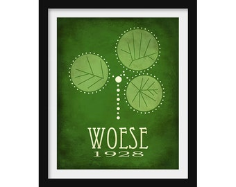 Microbiology Art, Science Poster, Carl Woese Microbiology Gift, Biologist Gift, Science Art, Taxonomic Poster, Bacteria Art, Office Wall Art