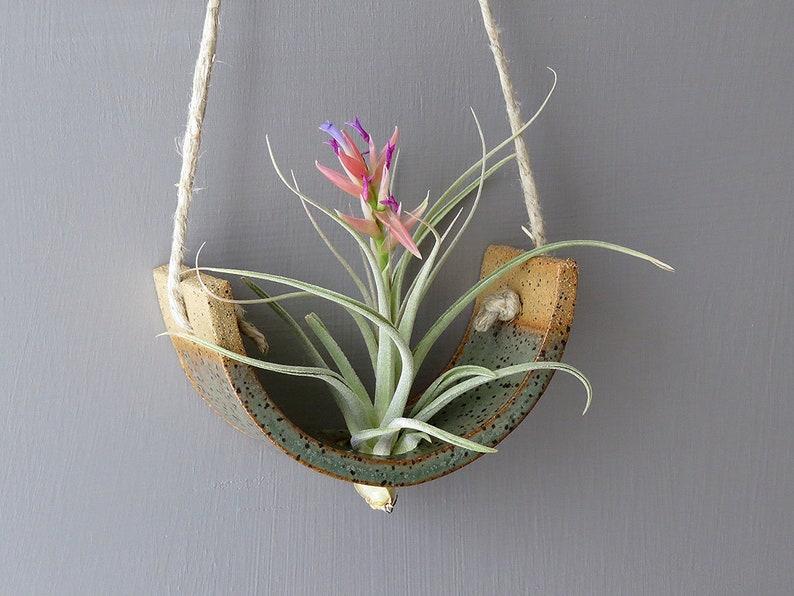 Small Hanging Air Plant Cradle  Gunmetal Green Planter Vase image 0