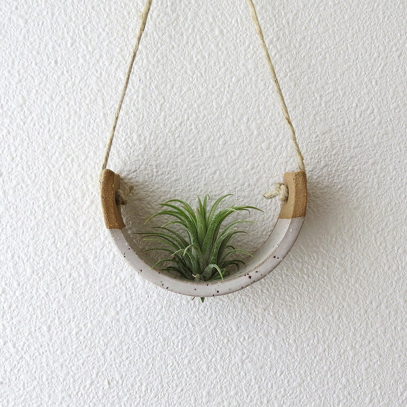 Small Hanging Air Plant Holder  Speckle Stoneware Planter image 0