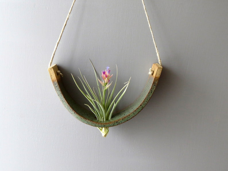 Hanging Air Plant Cradle  Gunmetal Green Planter Vase image 0