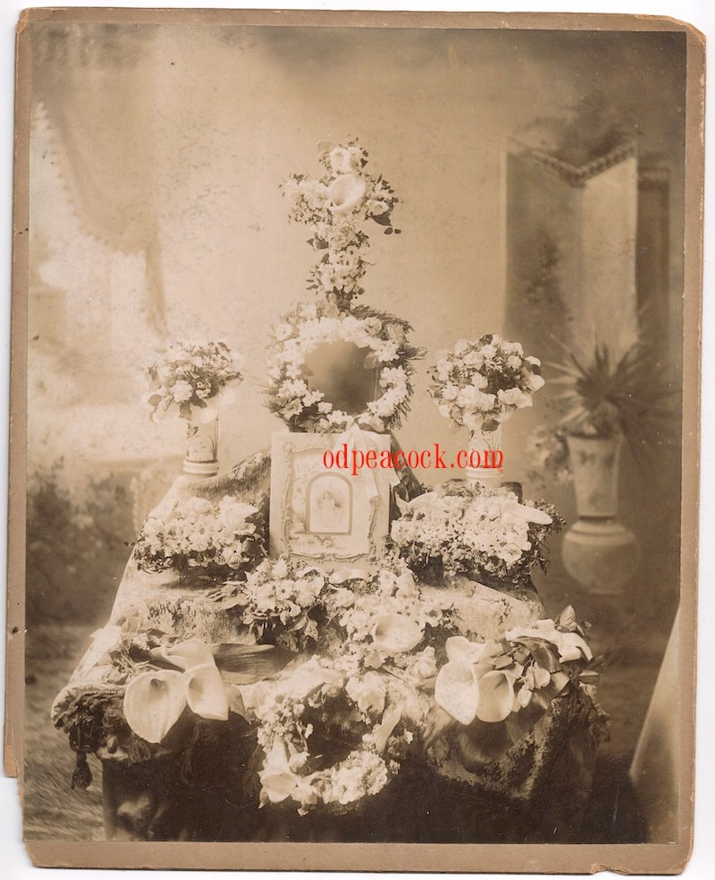 Mourning memorial large flower funeral death oddity child image 0
