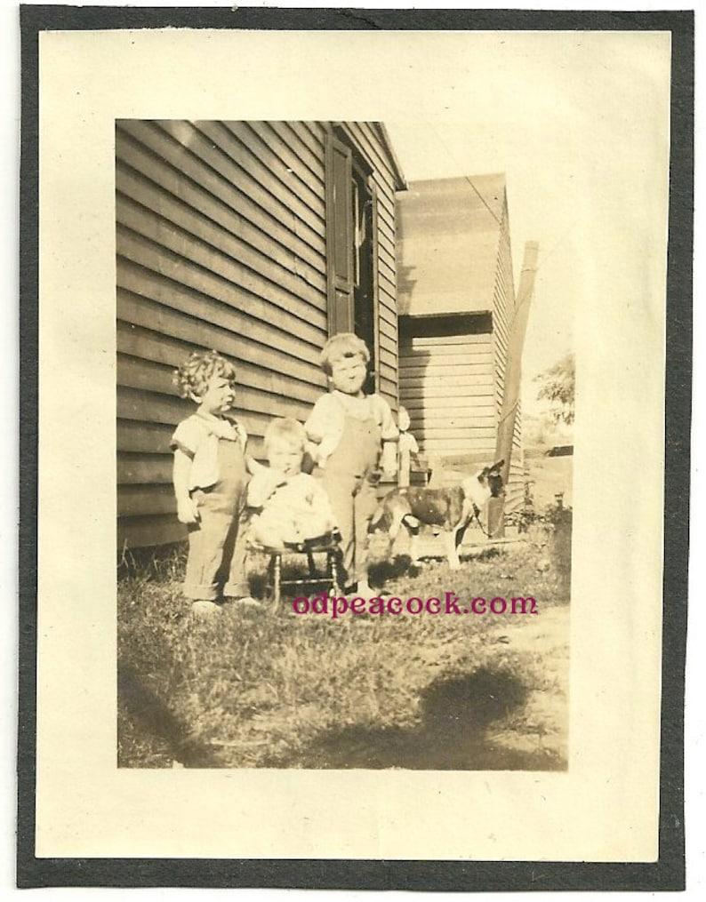 Vintage dog animal pet farm overalls kids photo mutt shadow image 0