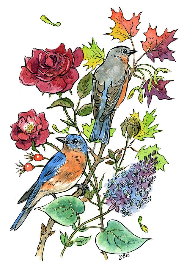 New York State Symbols Blue Bird Flower Rose Tree Sugar Etsy