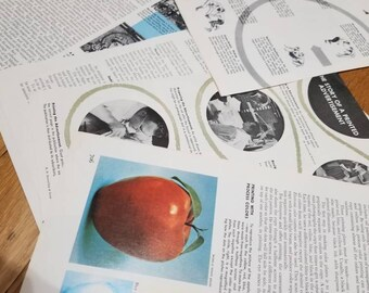 Vintage Encyclopedia Pages
