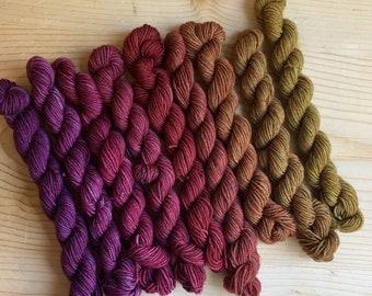 aurai partial rainbow mini skein sets 9 colors (2021 set)  (merino yak nylon)