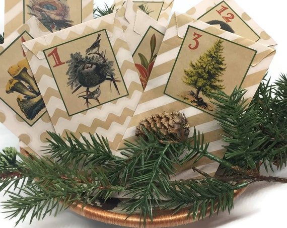 Country Cottage Advent Calendar Rustic Christmas Countdown Kit | Kraft Bags and Woodland Labels | DIY Nature Cabin Christmas Decor