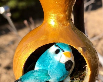 Bottleneck turquoise bird gourd  OOAK. Hand-made Gourd  ornament/decoration by Artist Sandy Short