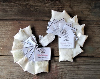 COMPLETE SET Laundry Soap Samples