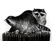 Brooklyn Raccoon Brooch SALE