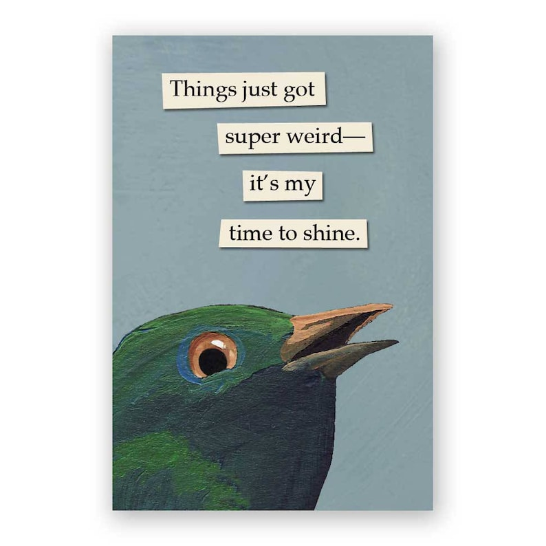 Things Just Got Super Weird Magnet  Bird  Humor  Gift  image 0
