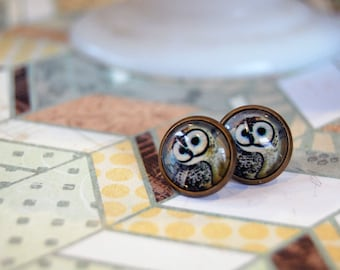 barn owl glass cabochons framed post earrings- woodland illustration- aged brass