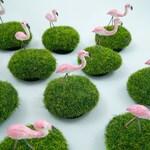 Tiny Flamingo Lawn