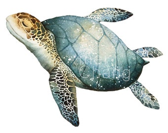 Sea turtle art print, 5X7 Sea turtle watercolor art print, Sea turtle painting, Sea turtle artwork, home decor, wall décor, Nature Art