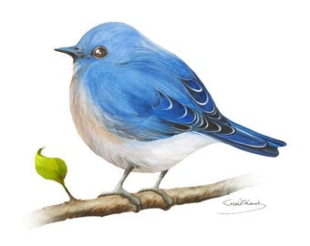 Bluebird Painting - Watercolor Bluebird - 5 x 7 print - Watercolor Painting, Archival Print, Home Decor, Nature Art