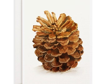 Set of 4 watercolor note cards - Xmas Cards, Holiday Cards, Pine cone watercolor note cards, greeting cards