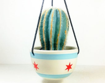 One Fabulous Chicago Flag Hanging Planter - Perfect apartment-sized hanging planter!