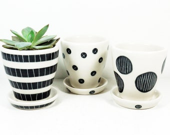 NEW. Selection of Small Batch Cappa Planters for your cutest small plants, simply finished in Black & White carved motifs