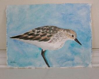 Sandpiper Painting, Shorebird Watercolor, Bird Art, Bird Cottage Decor, Beach Bird Wall Decor, Small Painting, 5.5 by 7