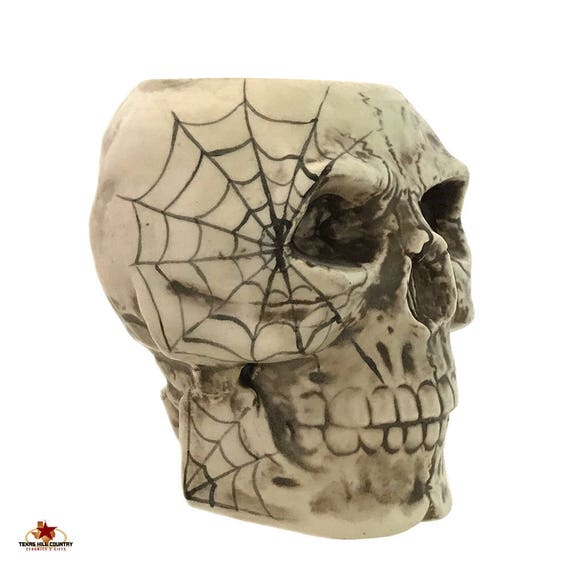 Ceramic Skull With Cobweb Design Toothbrush Holder for Bath Vanity or Pencil Pen Container for Desk or Skull Kitchen Decor