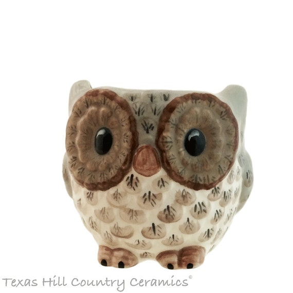Small Ceramic Owl Holder for Kitchen Scrubby, Bath Vanity Soap Holder, Planter or Container for Plants, Catch All for Keys or Change