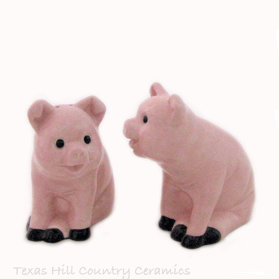 Collectible Pig Salt and Pepper Shakers Ceramic Country Farm Decor for Kitchen or Dining Table Accent or Outdoor Cook Out