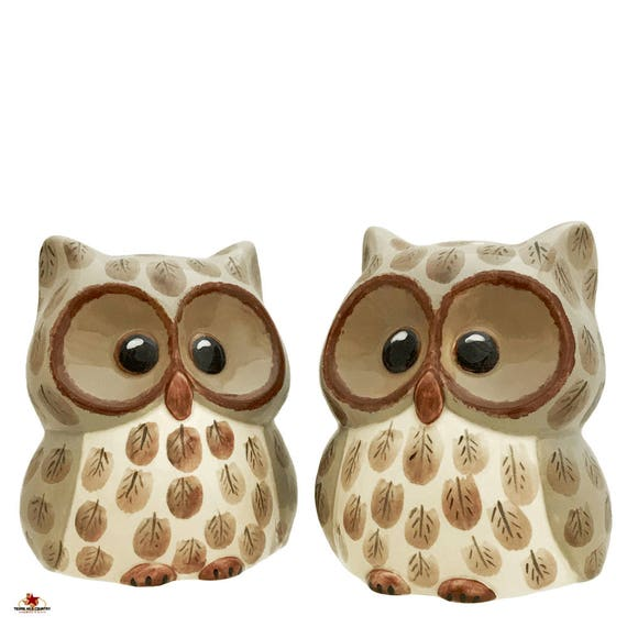 Ceramic Owl Salt and Pepper Shakers Collectible with Wide Eyes Original Hand Painted Detail