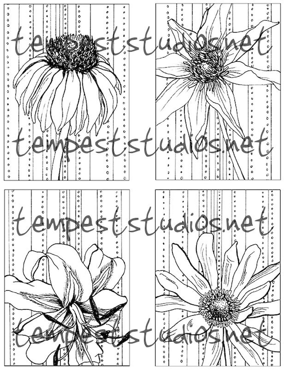 Flower Coloring Page 3 By Tempest Studios Printable Adult Kids Mini Set
