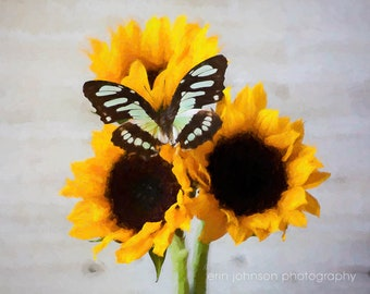 Yellow Sunflower Butterfly Digital Painting Print, Rustic Flower Farmhouse Decor, Canvas or Photo, Bedroom Living Room Wall Art