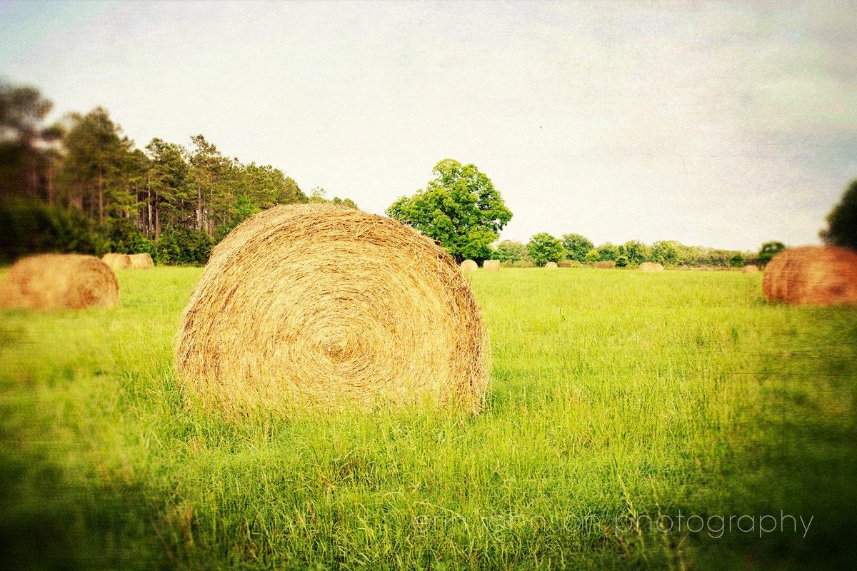farm photography hay bales rustic home decor green decor | Etsy