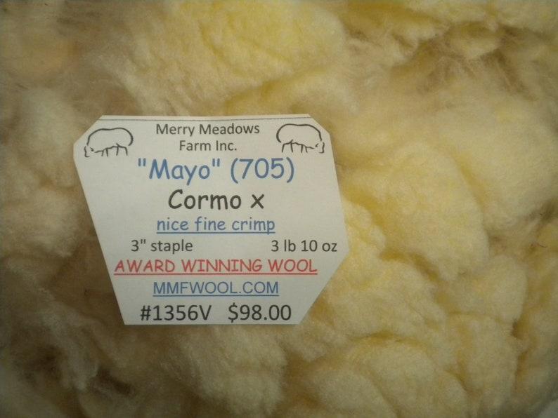 mmfwool 1356V  3 lb 10 oz fleece Mayo  Cormo x  3 staple  fine crimp