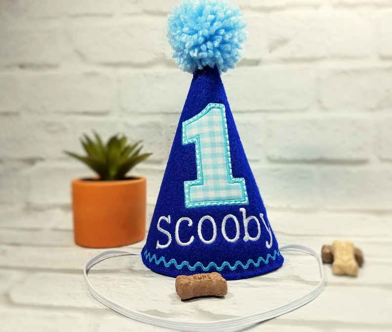 Dog Birthday Party Hat Personalized In Blue Cake Smash