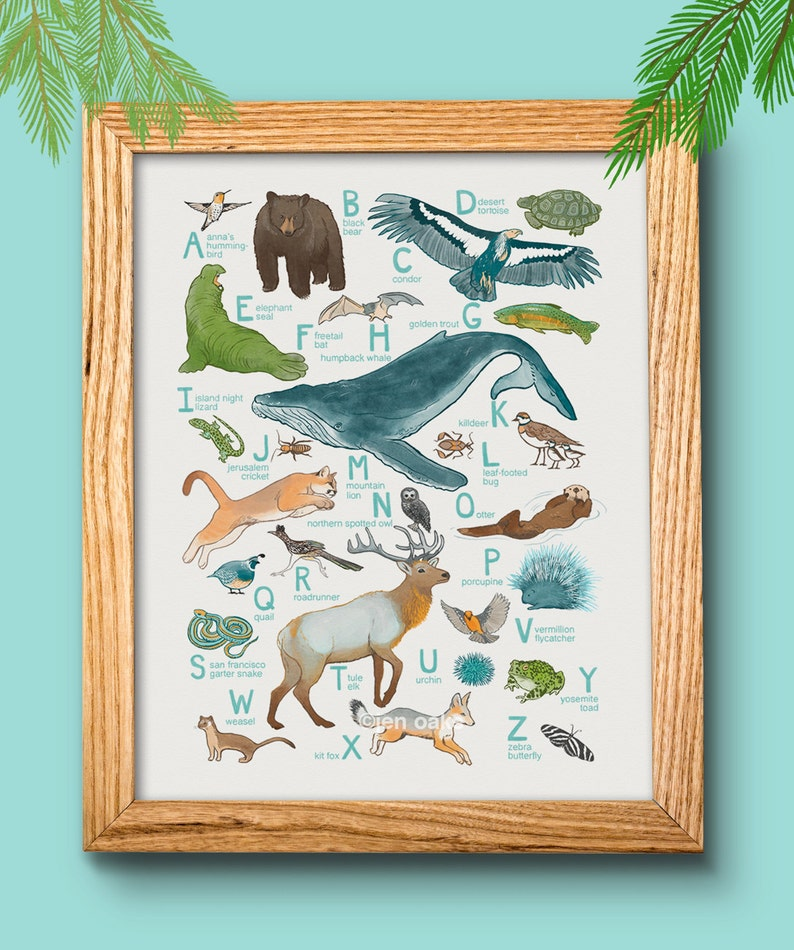 ABC Animal Print  10x13 print  baby kids nursery art image 0