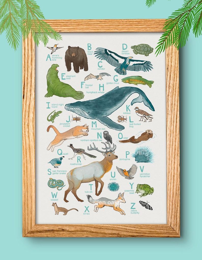 ABC Animal Print  13x19 print  baby kids nursery art image 0