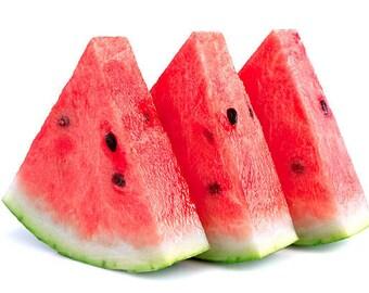 Shea Butter Lip Balm Watermelon Flavor  Vegan or Natural Blend
