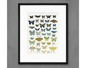 Dusk Butterflies Art Print