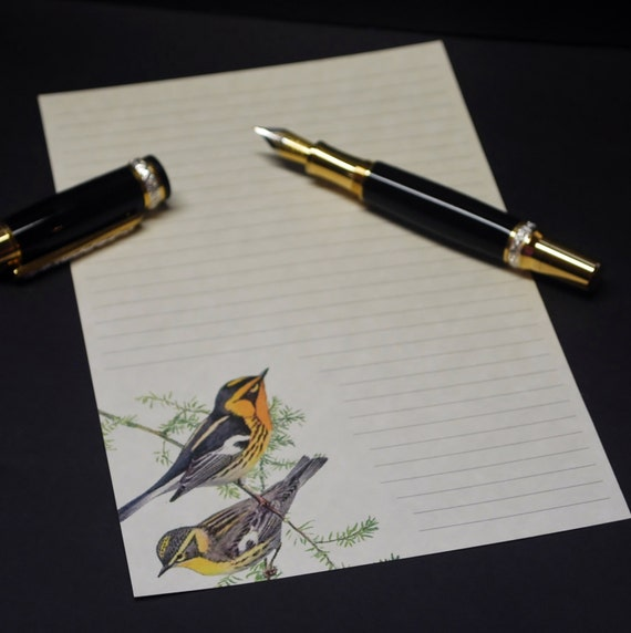 8.5 x 5.5 inches fine stationery set 30 pieces letter writing set snail mail lined or unlined social Chickadees hand written letters