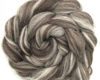 Jacob Humbug Wool Combed Top Roving 100g 3.5oz Undyed Natural British breed Wool