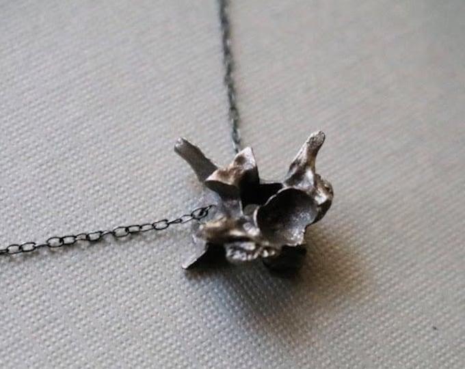 Hydra // snake vertebrae necklace