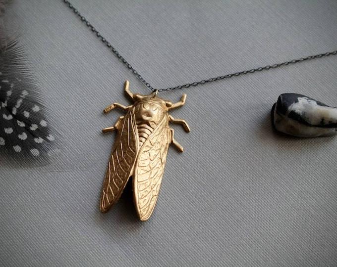 17 Years // raw brass cicada necklace