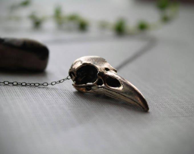 Murder // silver crow skull necklace