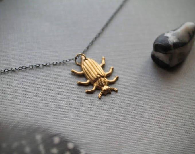 Potato Beetle // brass beetle necklace