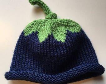 Baby Hat, Newborn Hat, Child Hat, Toddler Hat, Blueberry Hat, Roll brim beanie, Unisex, Customizable!