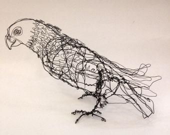 Maximilian Pionus Parrot-Wire Bird Drawing Sculpture art