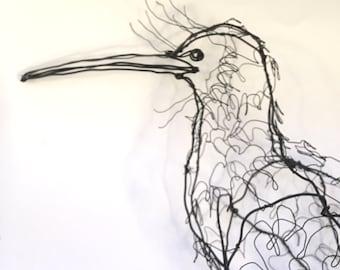 Kiwi Bird-Wire Drawing Sculpture art
