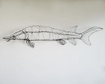 Sturgeon fish art-wire drawing sculpture