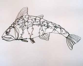 Salmon-wire drawing sculpture art