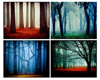 Fairytale Photography Set, Red Decor, Enchanted Forest Decor, Blue Decor, Bold Landscape Photography, Nature, Magical Landscapes, Fog Photos