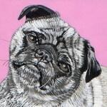Medium Size - Custom Pet Portrait