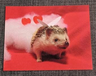 Love Valentine Hedgehog Postcard, set of 2, Hermione Hearts You
